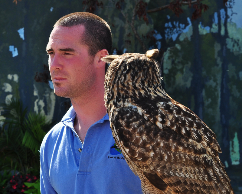 Owl_and_Handler