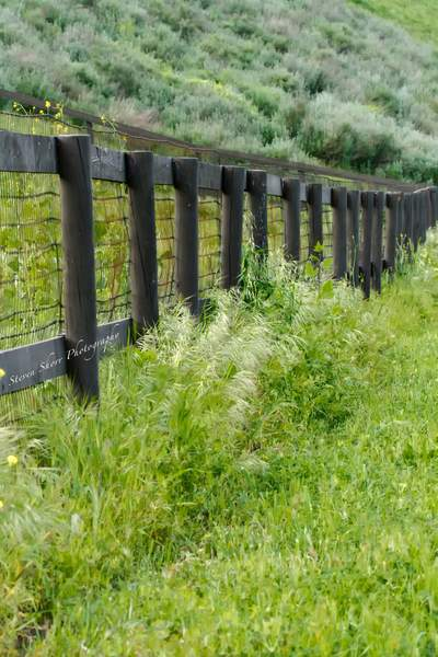Fence in Ballard Canyon