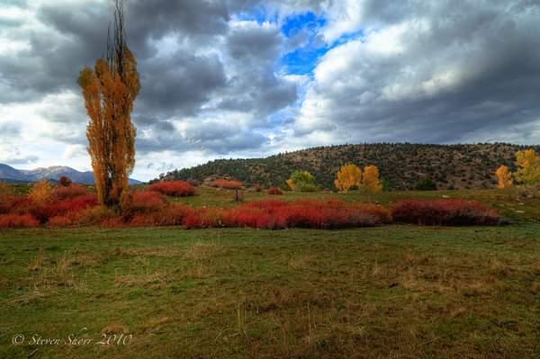 Eastern Sierras Fall Colors