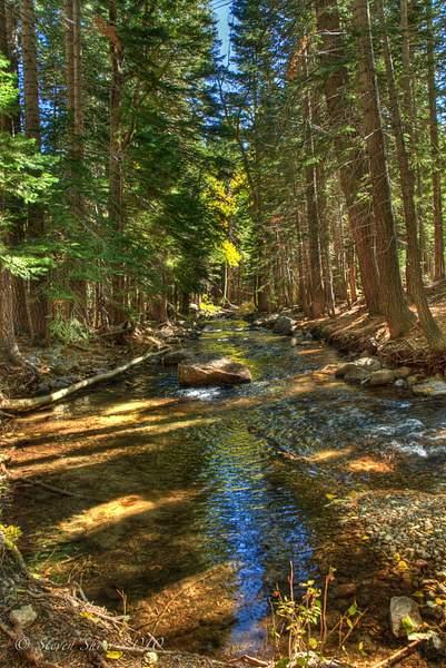 Down_the_Creek