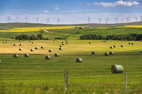 Southwest Alberta 5
