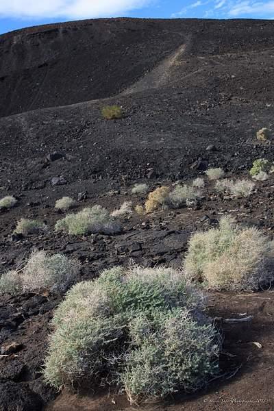 Pisgah Crater-1