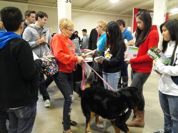 1/11/14 Bay Area Pet Expo by Ihskey2014