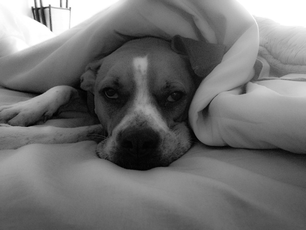 Mick under sheets-1-1 by DavidWipert
