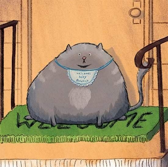 welcomecat
