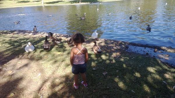 Fall Break At the park;2 by OsheaPiscopo