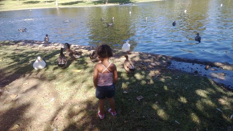 Fall Break At the park;2
