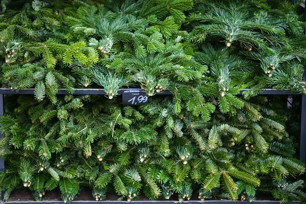 Рождественский рынок в Дессау...