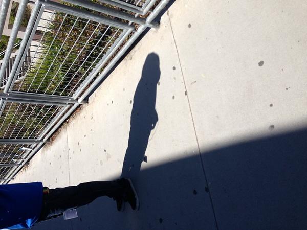 Shadows by MeganMasi