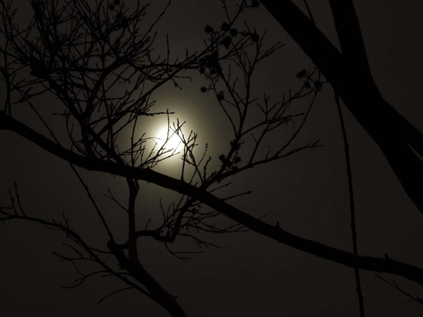 10 pictures of sun or moon by CameronBronner