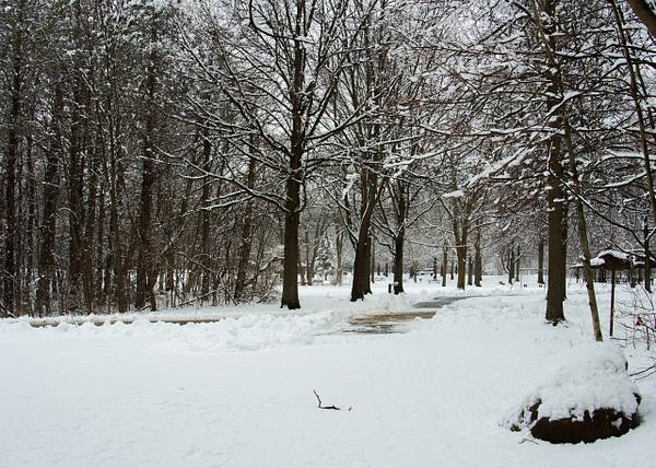 Parks by bob bielecki