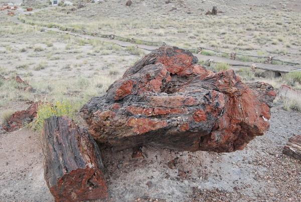 Albuquerque Monte Vista Greeley 08201409 test by Verryl...