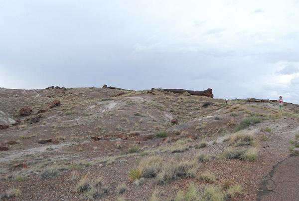 Albuquerque Monte Vista Greeley 08201411 test by Verryl...