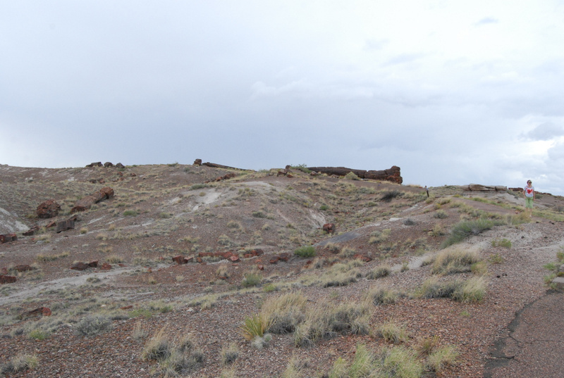 Albuquerque Monte Vista Greeley 08201411 test
