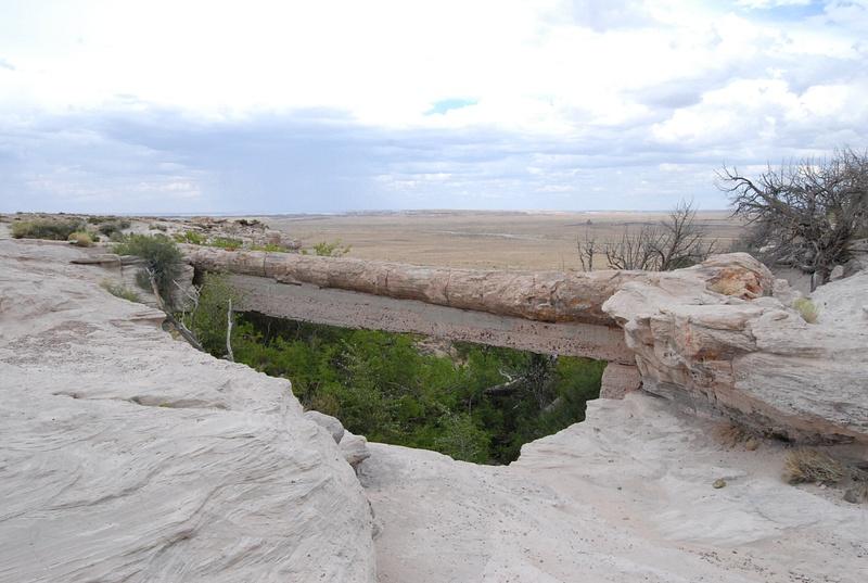 Albuquerque Monte Vista Greeley 08201443 test
