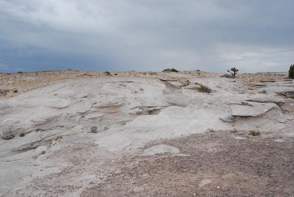 Albuquerque Monte Vista Greeley 08201444 test by Verryl...