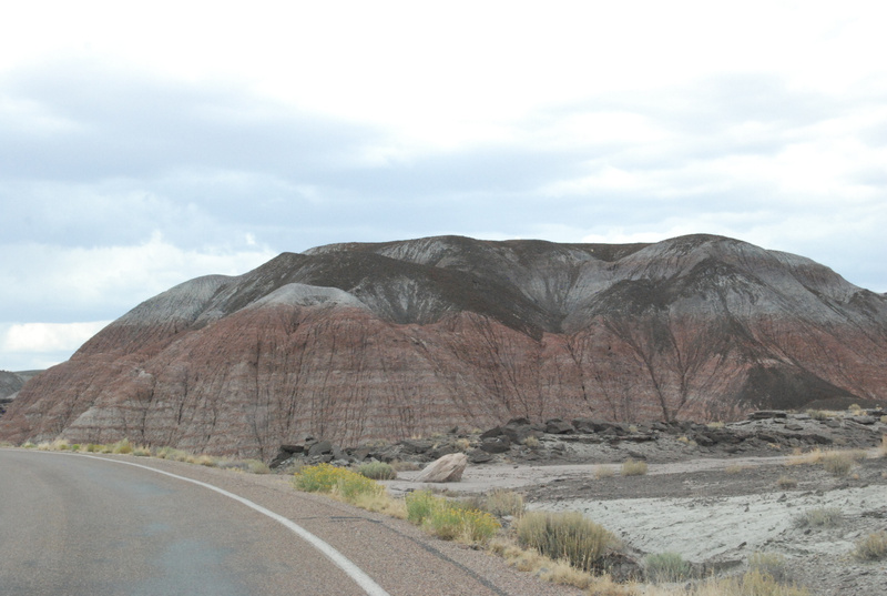 Albuquerque Monte Vista Greeley 08201451 test