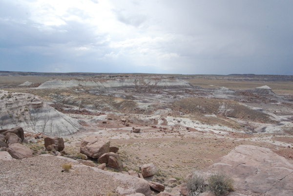 Albuquerque Monte Vista Greeley 08201425 test by Verryl...
