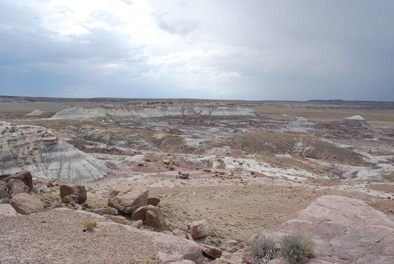 Albuquerque Monte Vista Greeley 08201425 test