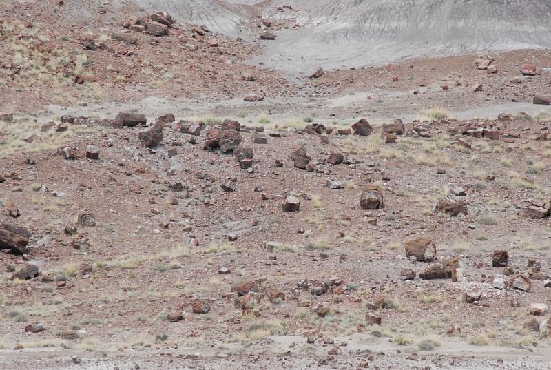 Albuquerque Monte Vista Greeley 08201428 test