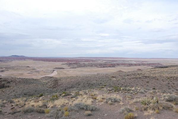 Albuquerque Monte Vista Greeley 08201489 test by Verryl...