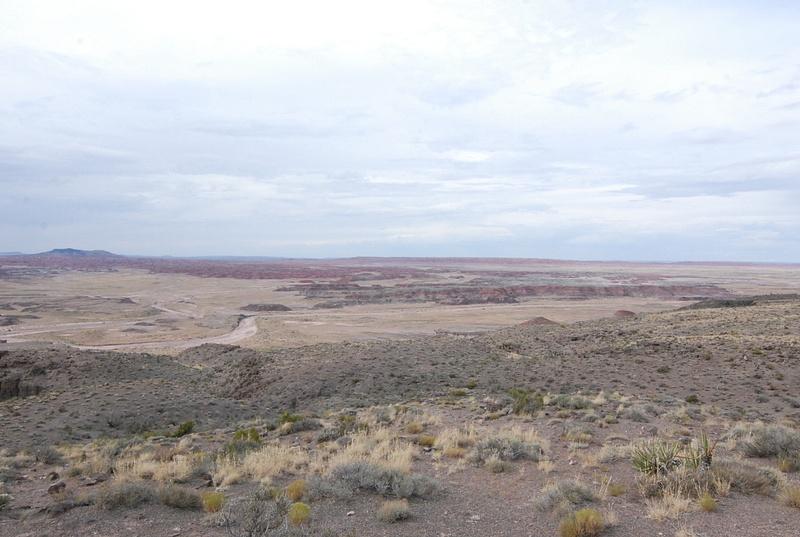 Albuquerque Monte Vista Greeley 08201489 test