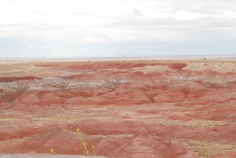Albuquerque Monte Vista Greeley 08201497 test
