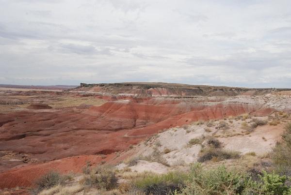 Albuquerque Monte Vista Greeley 08201481 test by Verryl...