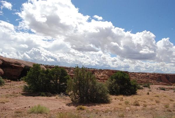 Albuquerque Monte Vista Greeley 082014355 test by Verryl...