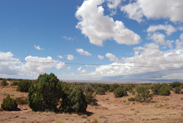 Albuquerque Monte Vista Greeley 082014359 test by Verryl...