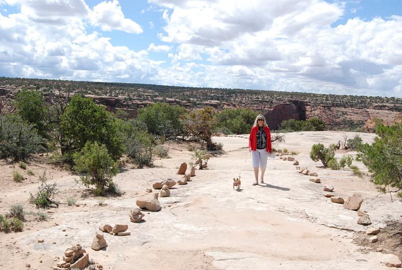 Albuquerque Monte Vista Greeley 082014362 test