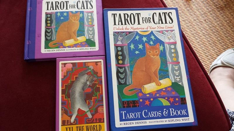 4cats3