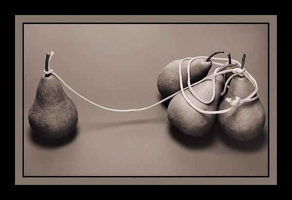 N A T U R A   M O R T A by Gino De  Grandis
