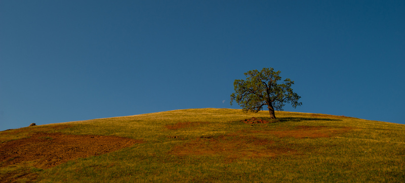 Pre Sierra Hills