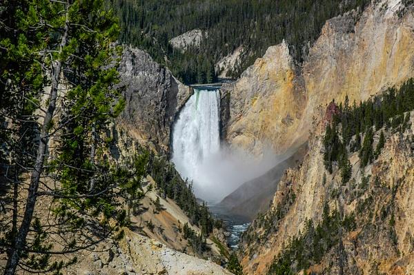 Yellowstone Waterfall by Gino De  Grandis