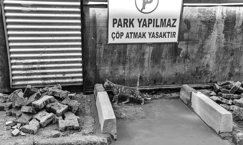 ISTANBUL HR one-289