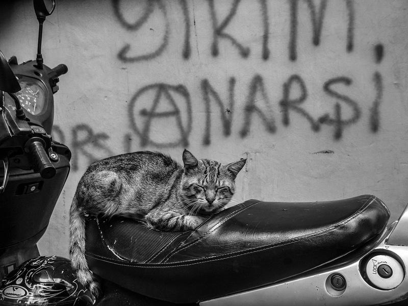 ISTANBUL HR one-181
