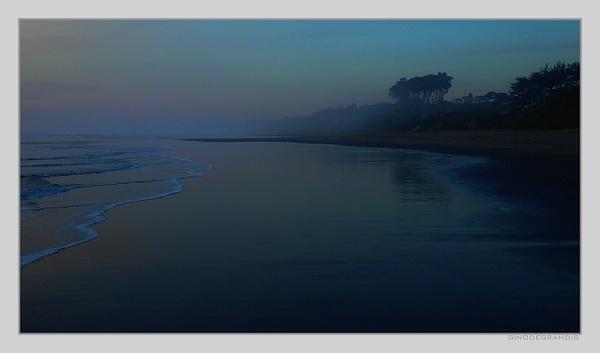 Pacific Shore by Gino De  Grandis