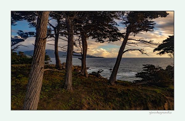 Monterey Bay by Gino De  Grandis