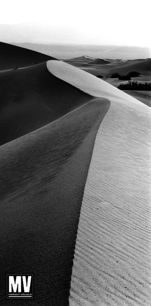 Landscape: Silver-Based B&W Prints by Michael Mariant