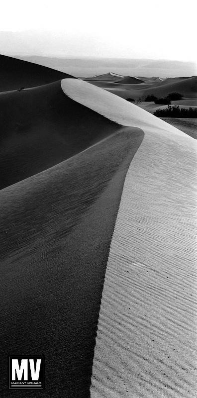 Vertical Dune #2, Death Valley