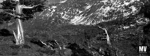 Above Grass Lake