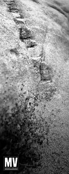 Joshua Tree: Stone Steps