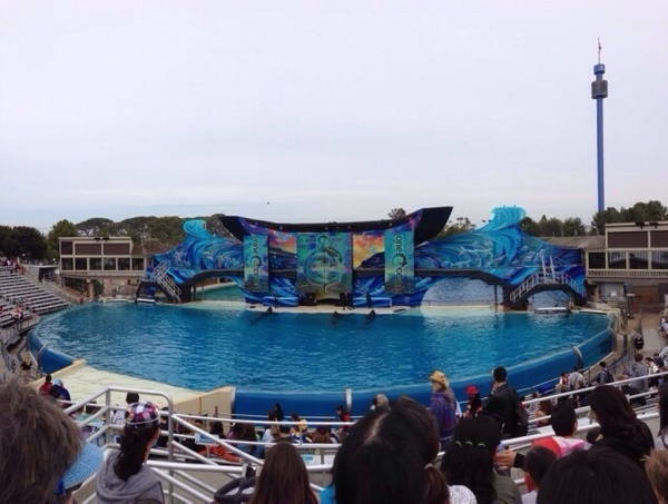 Seaworld by JaredVazquez