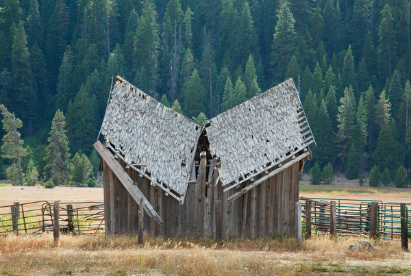 End of Life nr Mt. Lassen.jpg by Harrison Clark