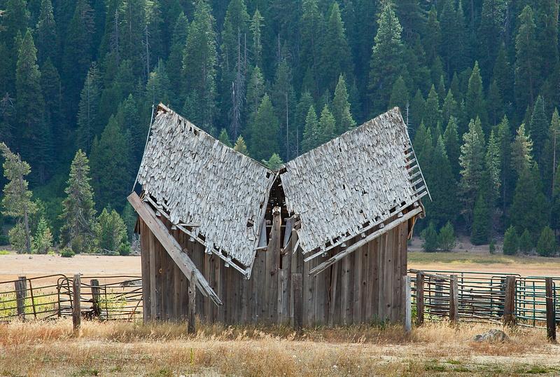 End of Life nr Mt. Lassen.jpg