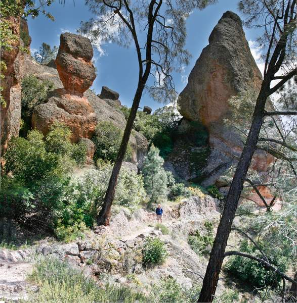 Pinnacles -5