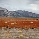 Eastern Sierra & Hwy 395