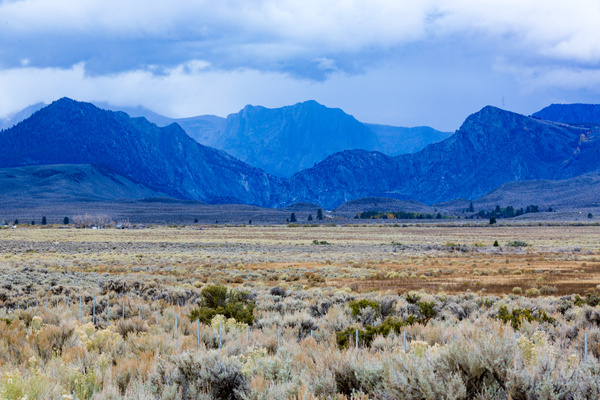 Colorful High Desert South of Lee Vining (7100').jpg by...