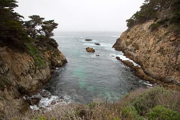 Point Lobos-20